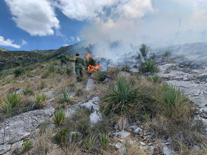 Ejército Mexicano desplegó más de 100 elementos para aplicar el Plan DN-III-E, en diversos estados del país por incendios forestales