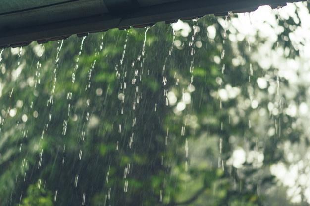 Martes con probabilidad de lluvia.