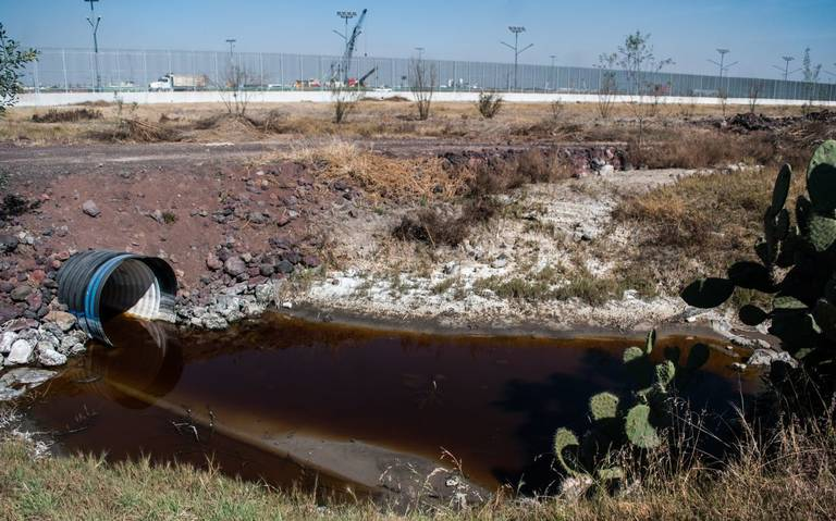 Ya se tiene presupuesto para rescatar el Lago de Texcoco: Andres Manuel López Obrador