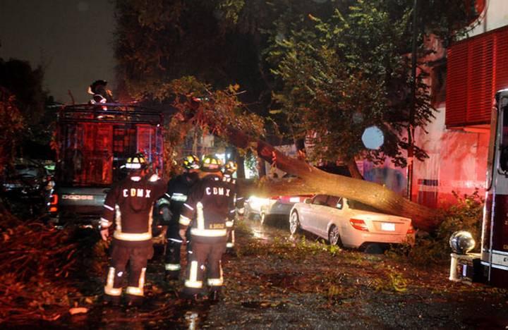 Rescatan a un menor del interior de una camioneta que fue aplastada por un árbol