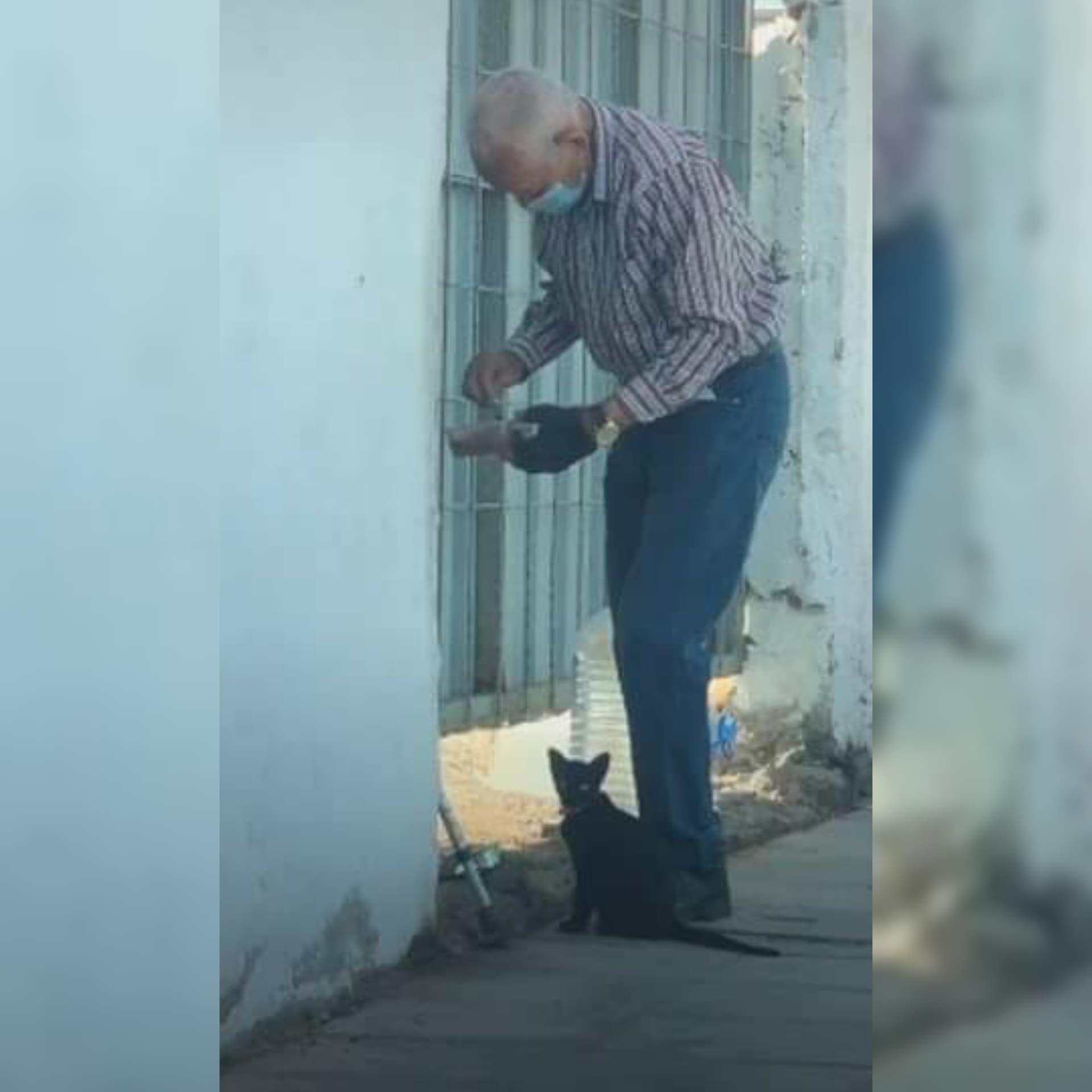 Abuelito lleva comida a una gatita que se encuentra en una casa abandonada