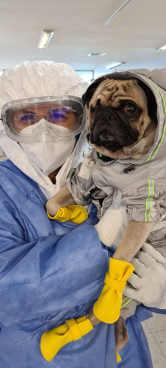 ISSSTE concluye el Programa de Apoyo Emocional y Asistencia Humanitaria Asistido por un canino