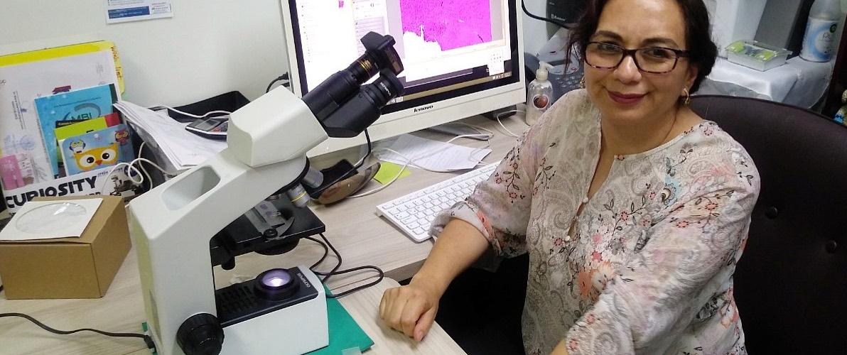 Puede SARS-CoV-2 dañar el páncreas y provocar diabetes: científica del IPN