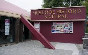 Museo de Historia Natural  permanecerá cerrado hasta nuevo aviso.