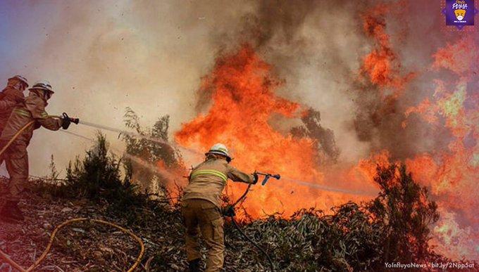 2021 podría ser un año de numerosos incendios forestales en México: UNAM