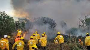Exhorta Gobierno capitalino a la ciudadanía a evitar incendios forestales