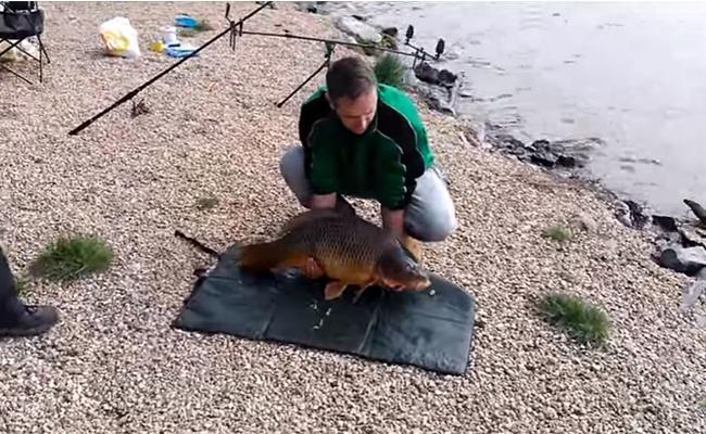 [Video] Presume su trofeo de pesca pero se le escapa entre las manos