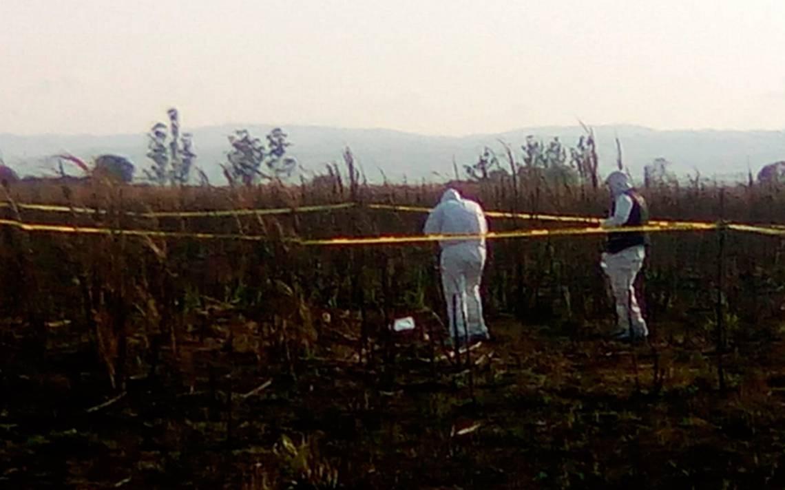 Colectivos de familiares desaparecidos encuentran dos fosas clandestinas en Nayarit