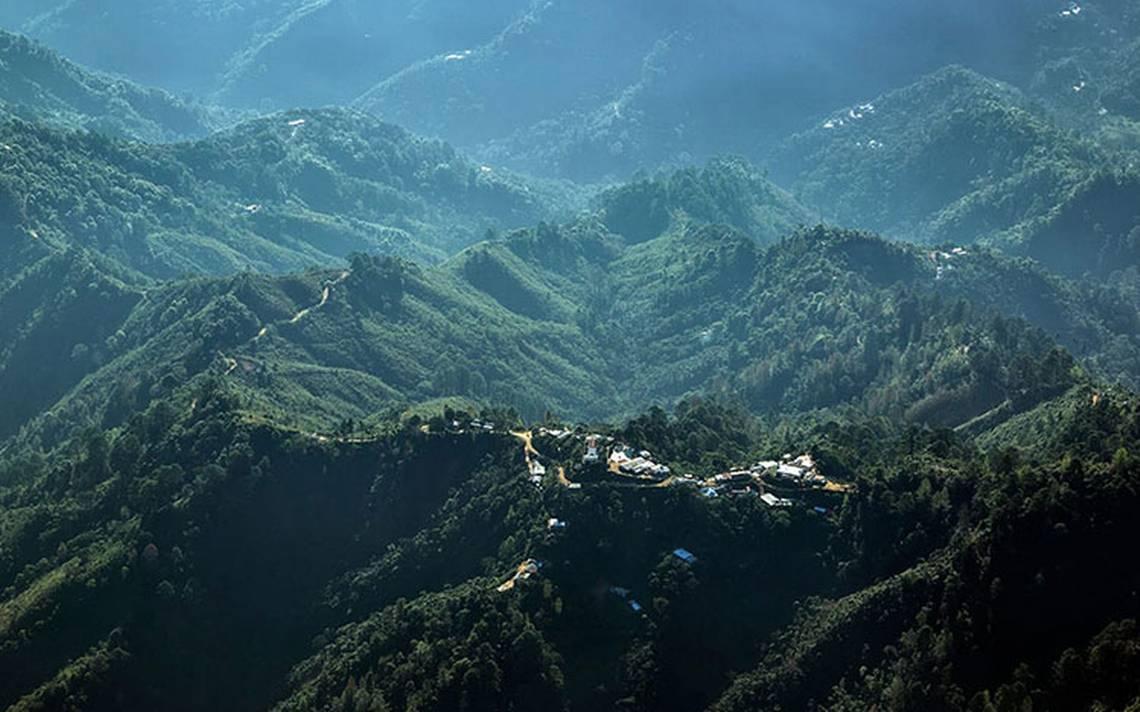 Reserva de la Biosfera El Triunfo: Un paraíso entre la niebla