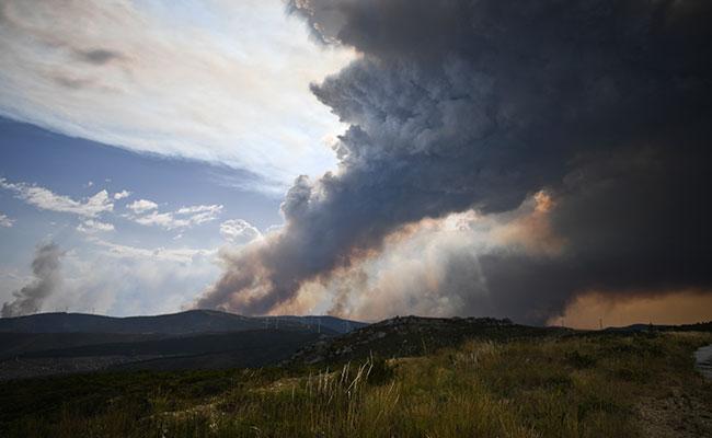 Incendio de Portugal no da tregua y avanza sin control hacia el norte