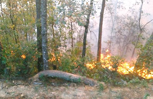 Incendio en Mixtla podría extenderse a Zongolica
