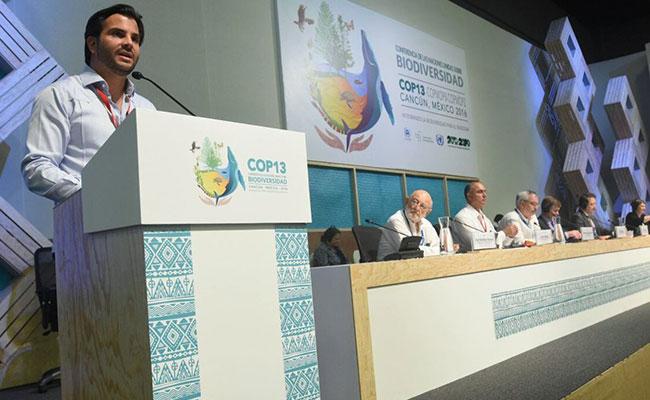 Frenar pérdida acelerada de biodiversidad, compromiso de México