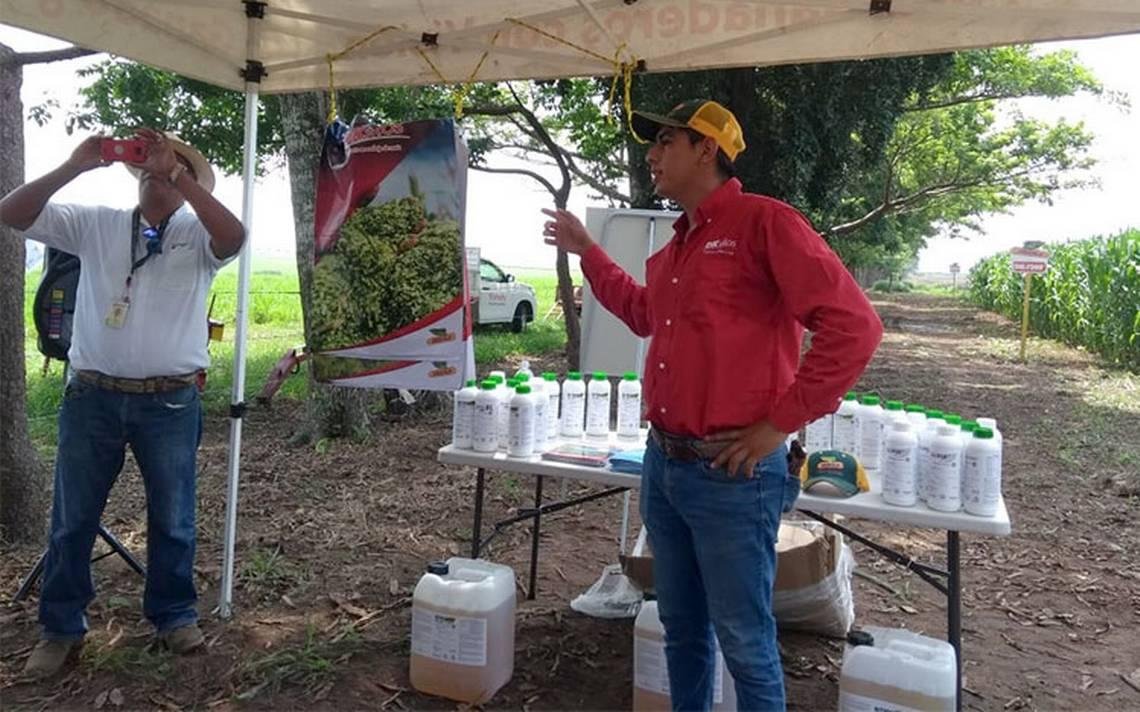 Nestlé asesora a ganaderos de Veracruz