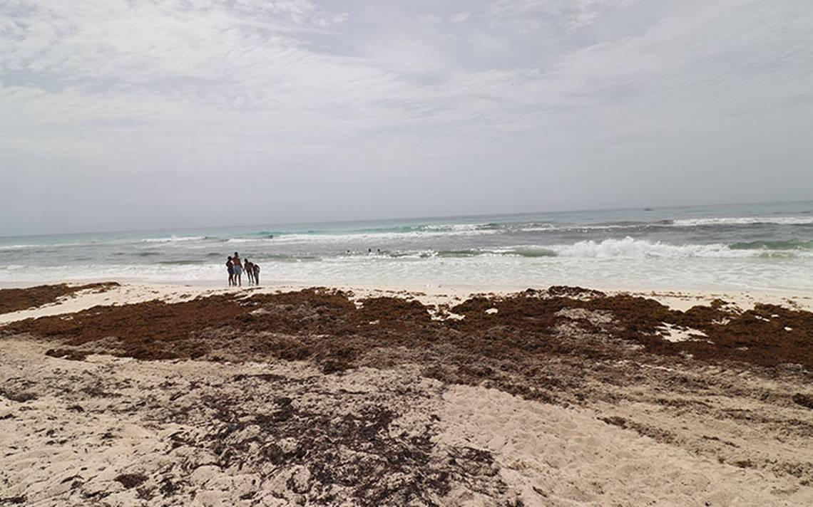Turista inglés se suicida en hotel de Cancún; padecía esquizofrenia