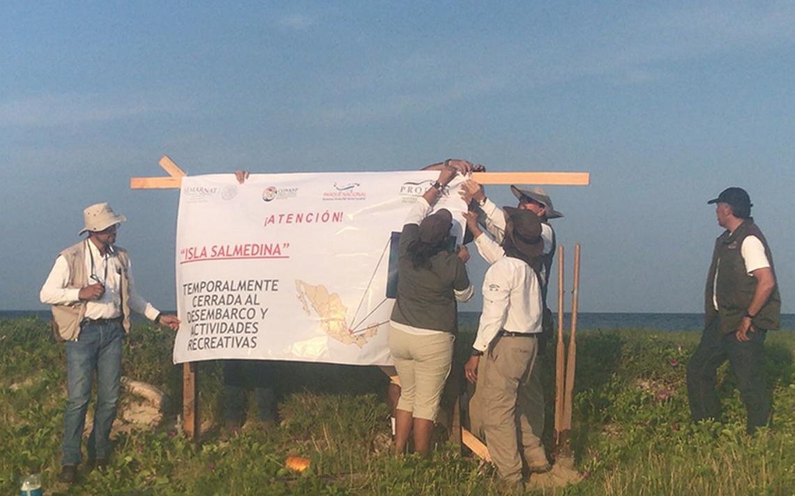 Clausuran islas en Veracruz tras fiesta privada que mató tortuguitas