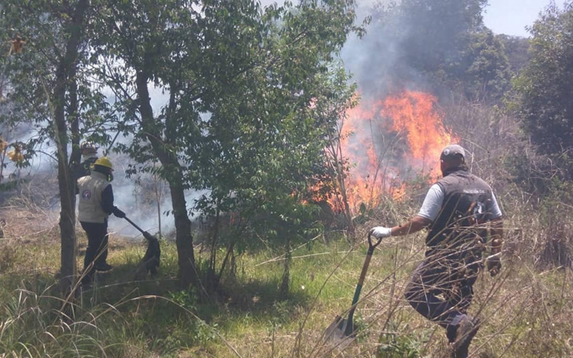 Bomberos combaten incendio en reserva ecológica en Tlalpan