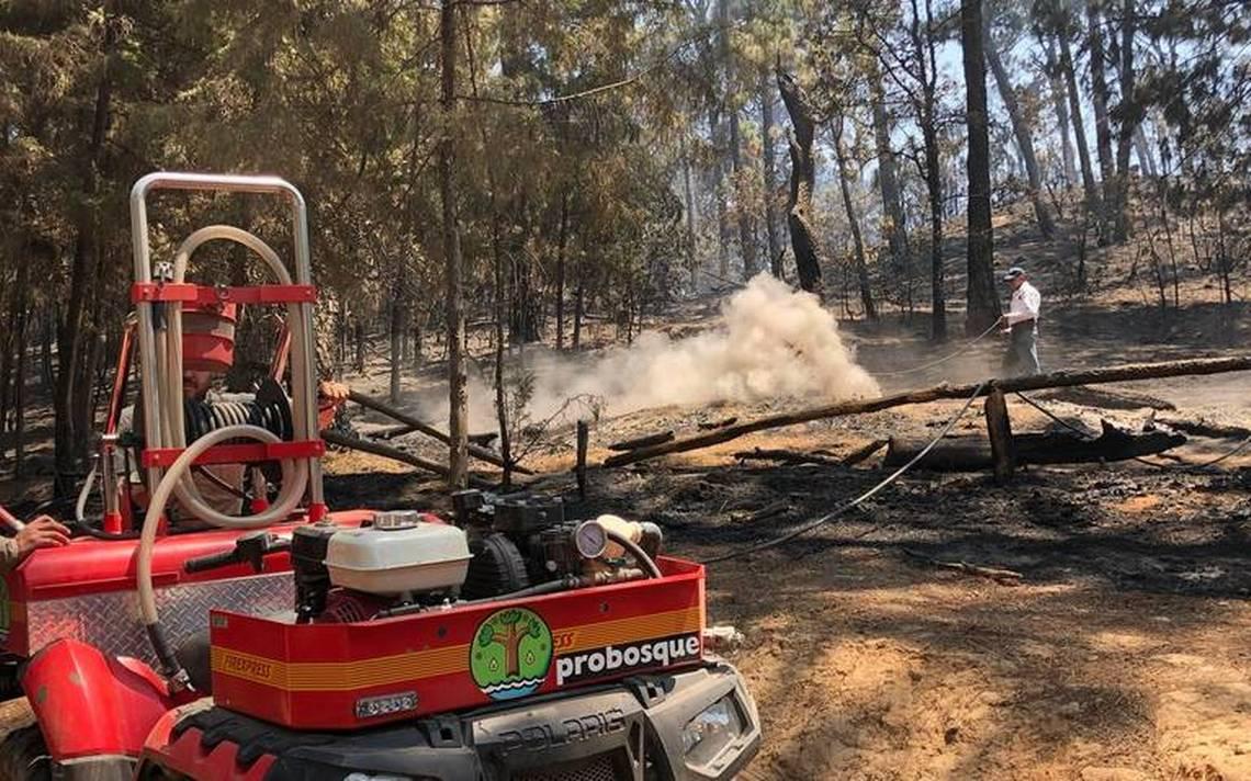 Anuncian reforestaciA?n en zona de incendio en Valle de Bravo