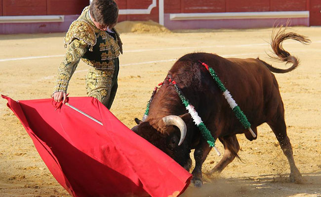 Importante triunfo de Pedro Llaguno en España