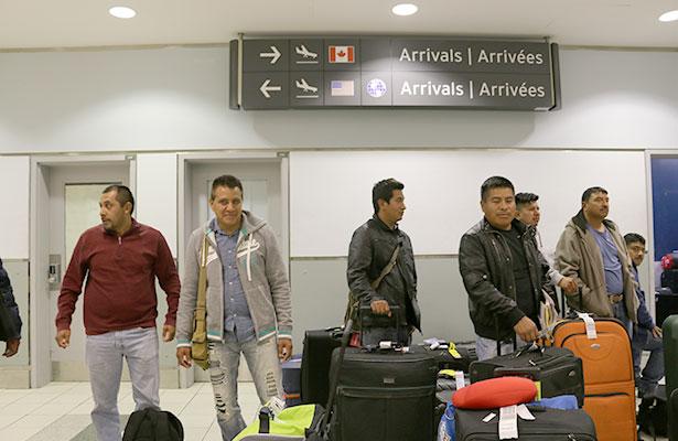 Llegan a Canadá cientos de jornaleros mexicanos
