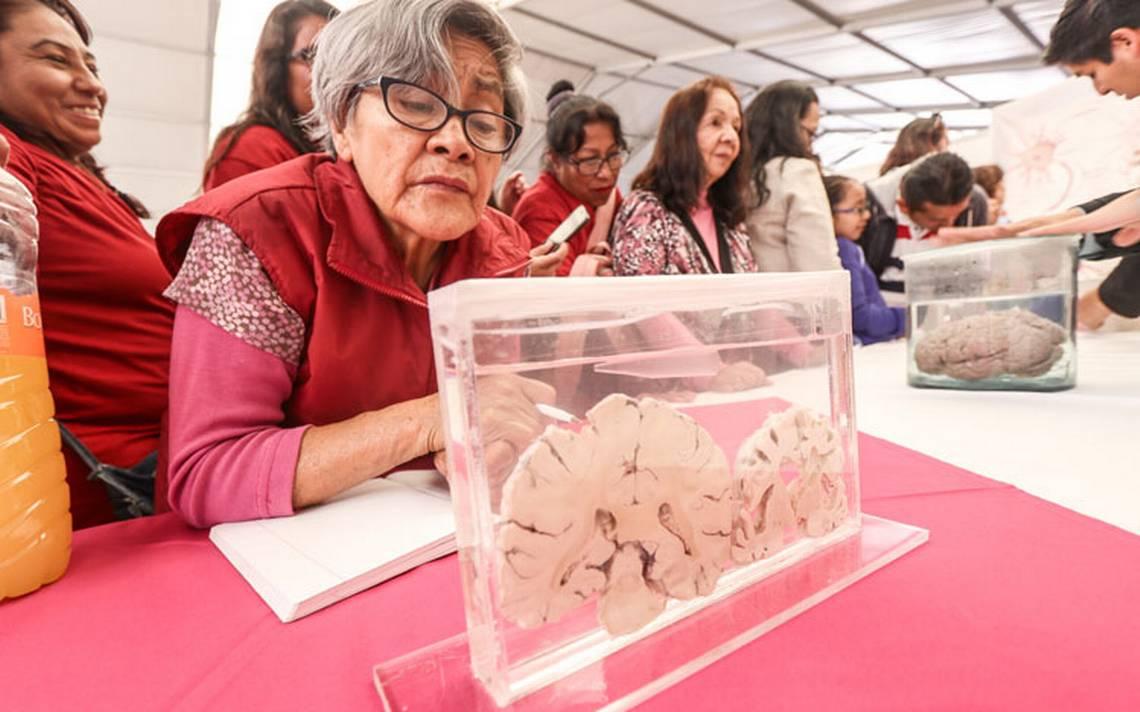 Arman ejército de cuidadores para adultos con Alzheimer