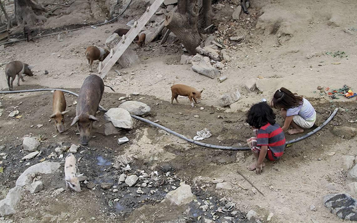 Persiste violencia contra pobreza extrema: ONU
