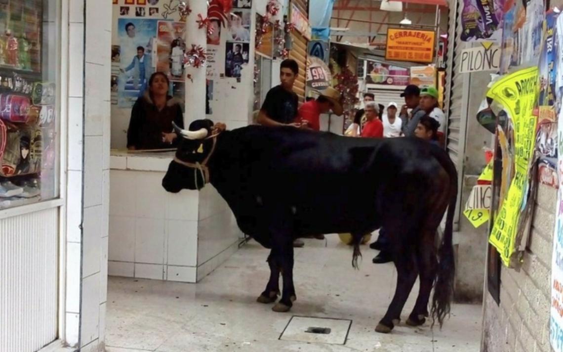 Toro escapa a un mercado de la CDMX y lastima a una mujer