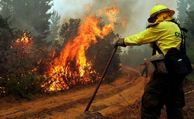 Incendios forestales en Chile serán combatidos por zacatecanos