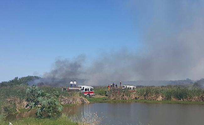 Registran dos incendios en manglares de Tamaulipas