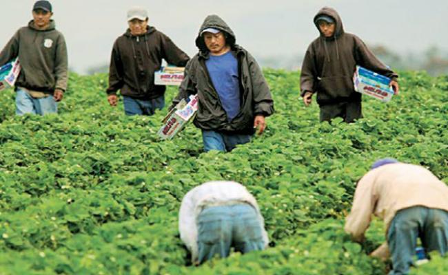 Capitalinos se pronuncian en apoyo a migrantes