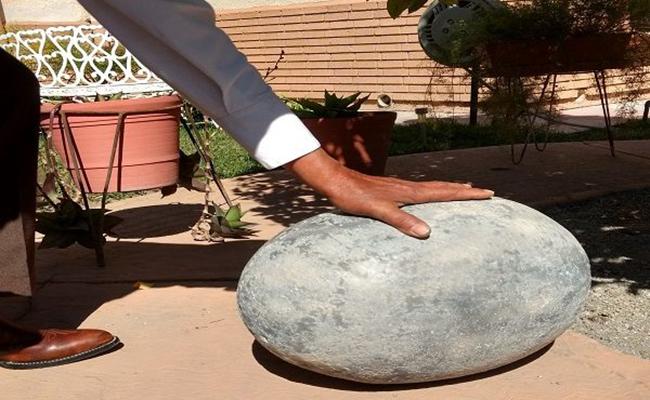 Hallan huevo fosilizado de dinosaurio en jardín