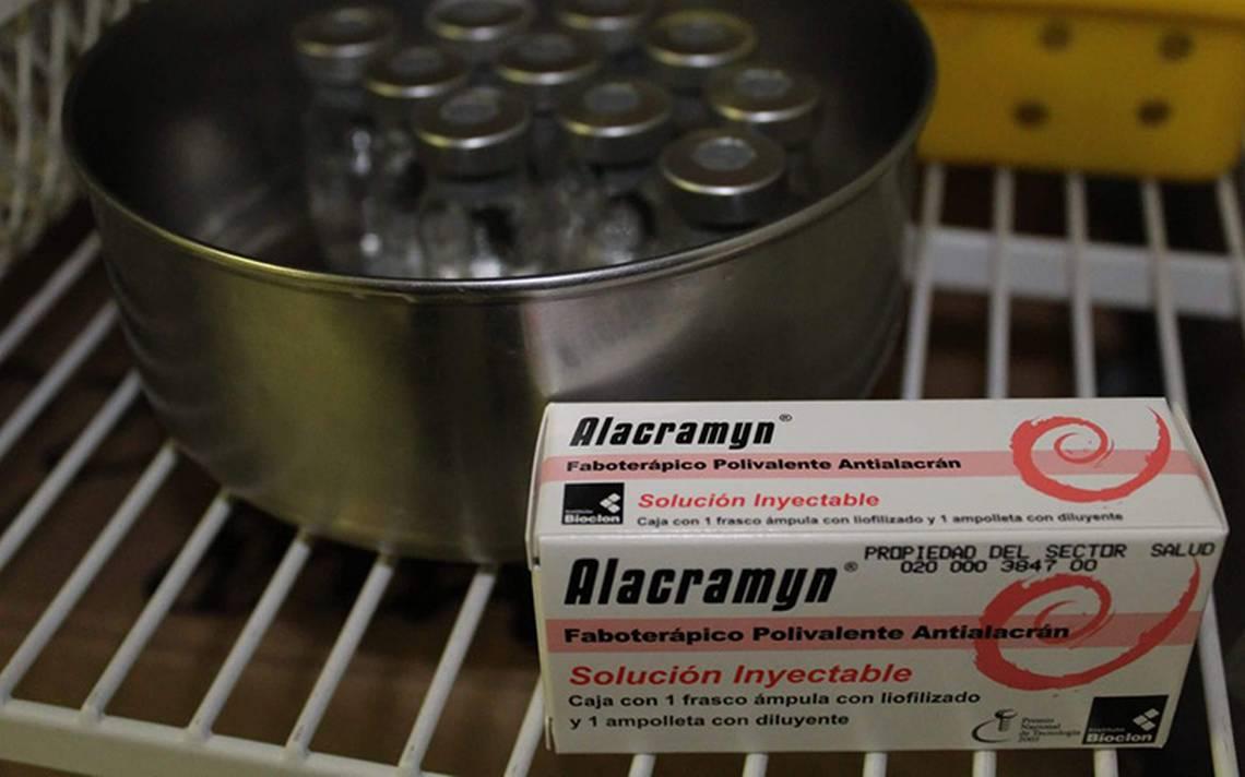 Aumentan picaduras de alacranes en Durango y Zacatecas
