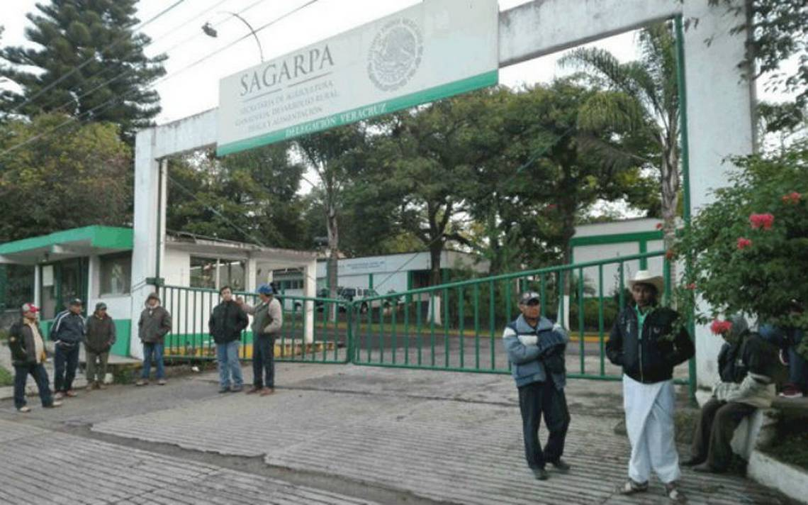 Por corrupción, cesan a funcionario de la Sagarpa en Veracruz