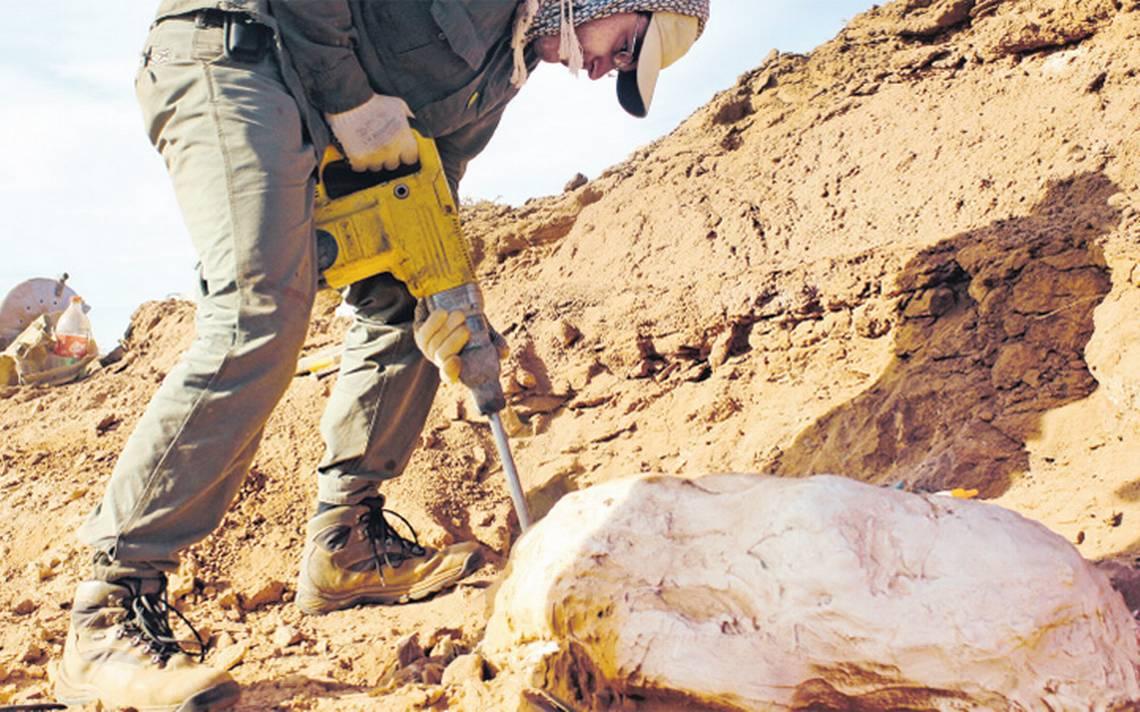 Investigadores descubren el dinosaurio gigante más antiguo