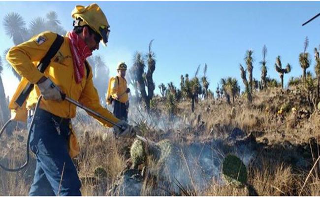 Acaba temporada de incendios en Veracruz