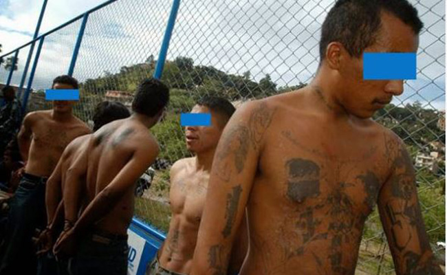 Suman 161 pandilleros detenidos en Tapachula