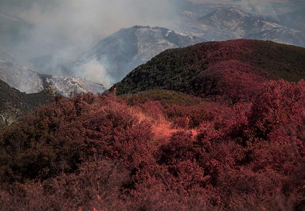Espera Monterrey sequía y riesgos  de incendios