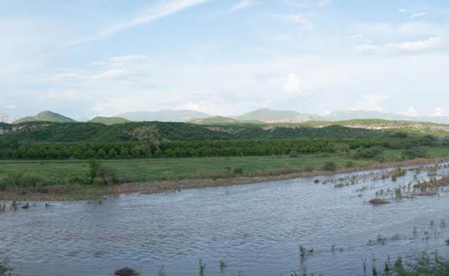 Banamichi, otra víctima del derrame en el río Sonora