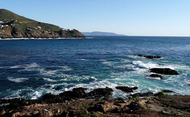 Baja California registra histórica marea roja