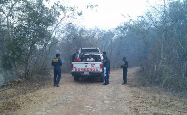 Continúa incendio forestal en parque El Veladero