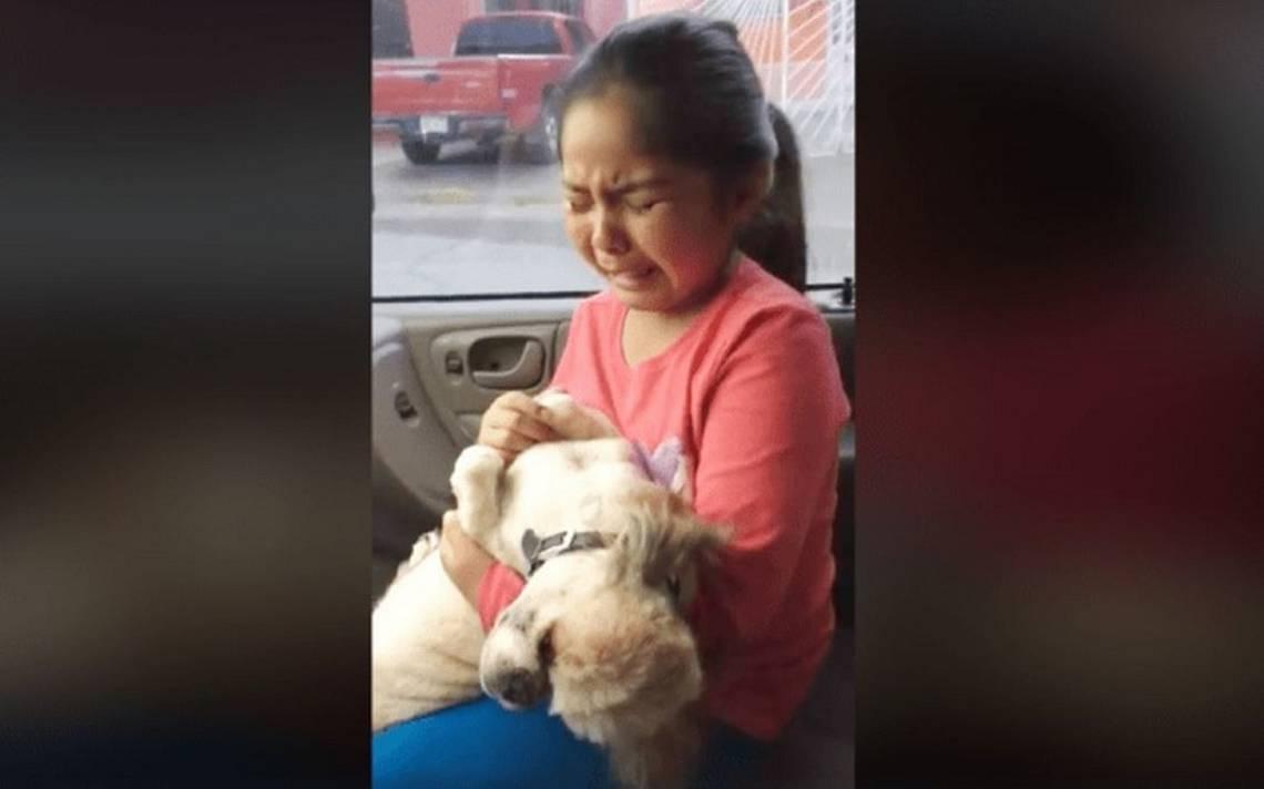 [Video] Conmueve llanto de niña porque su perro quedó como un puerco pelonchas