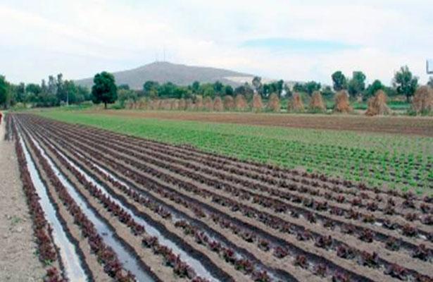 Comité de Productividad da recomendaciones a sectores agroindustrial y turístico