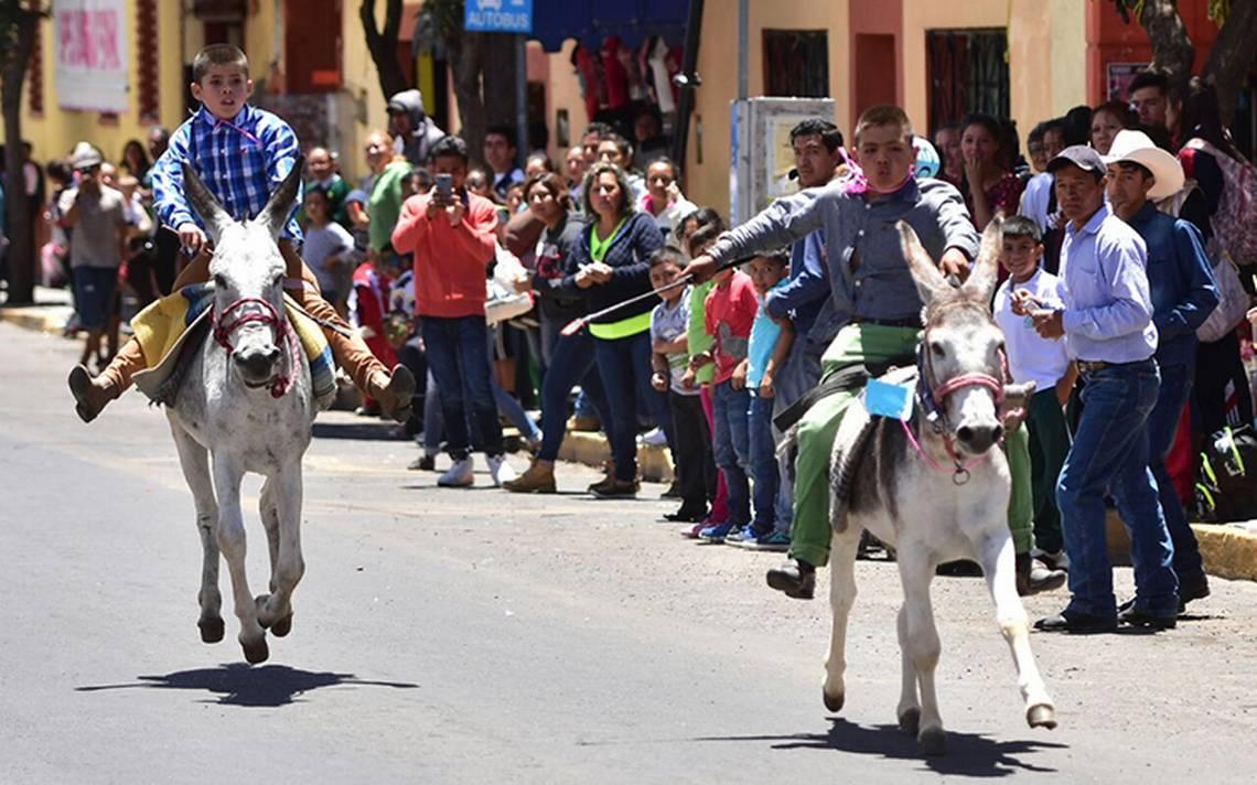 Gana el Felimón la carrera de burros en Tlaxco