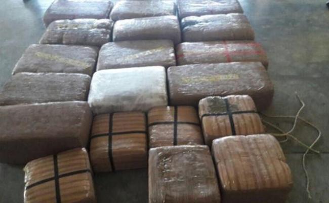Decomisan 350 kilogramos de droga en Reynosa