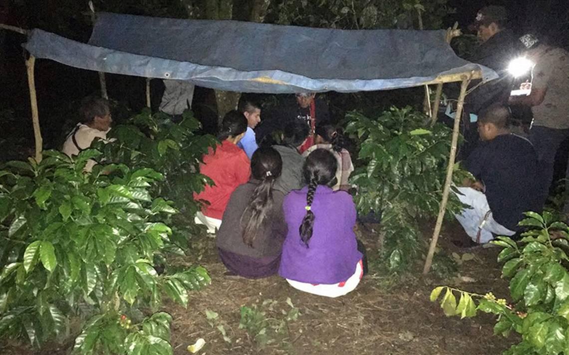 Más de 5 mil personas se refugian en montañas de Chiapas tras amenazas de grupo armado