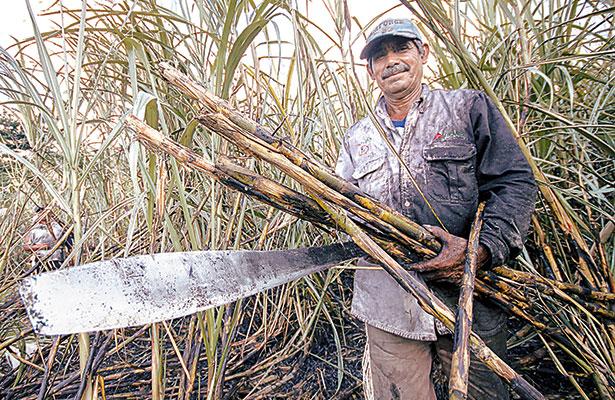 Frenarán arribo de fructosa estadunidense al país en  caso de aranceles al azúcar