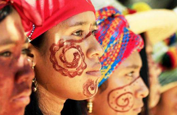 Claves los pueblos indígenas en conservación de vida silvestre: FAO