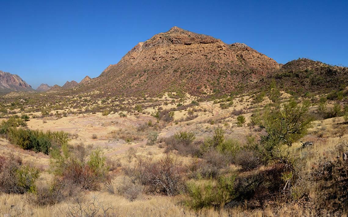 Investigan hallazgo de 134 restos óseos humanos, en Sonora