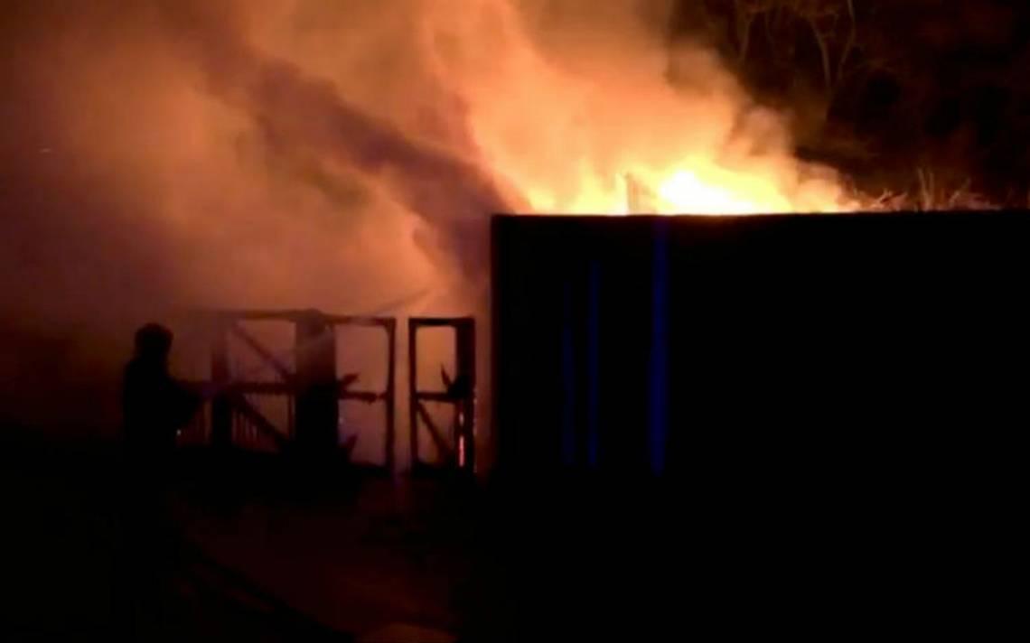 Incendio en zoo de Londres deja varios afectados y un animal muerto