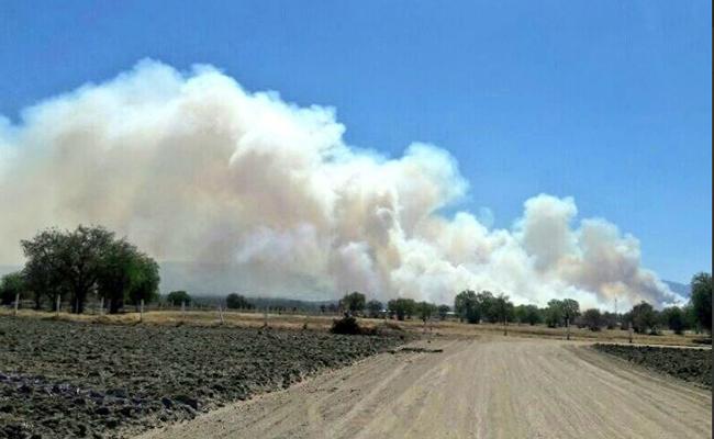 Combaten incendios forestales en el Estado de México