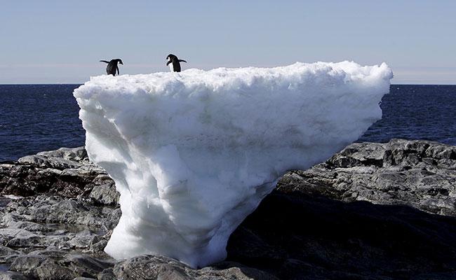 La Antártida registra su récord máximo de temperatura